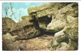 Cp, 77, Forêt De Fontainebleau, La Rohe Qui Pleure, Voyagée 1959 - Fontainebleau