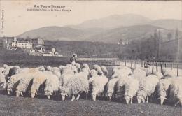 64 -- Pyrénées  Atlantique -- Basseboure Et Le Mont Ursuya -- Troupeau De Moutons En Premier Plan - Itxassou
