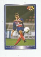 Carte De Collection , Official FOOTBALL Cards 1995 , PANINI , Strasbourg N° 196 - Autres Jeux De Cartes