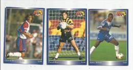 Carte De Collection , Official FOOTBALL Cards 1995 , PANINI , Lyon N° 83/84/85 , LOT DE 3 , Frais Fr : 1.50€ - Autres Jeux De Cartes