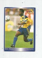 Carte De Collection , Official FOOTBALL Cards 1995 , PANINI , Guingamp  N° 182 - Autres Jeux De Cartes