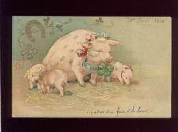 Cochon  Truie Avec 3 Porcelets Trèfle Fer à Cheval Porte Bonheur Pas D'éditeur Gaufrée Précurseur - Cochons