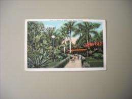 ETATS UNIS FL FLORIDA PALM BEACH SCENE IN GARDEN OF EDEN - Palm Beach