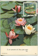 Waterlily - Victoria Amazonica  (Maximum Card) - Plants