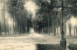 Postel ( Moll )  Steenweg Naar Moll - Unclassified