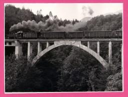 Grande Photo - Autriche - Steyrtalbahn - Train à Vapeur Sur Viaduc - Pont - Animée - 1971 - 23,5 X 17,5 Cm - Unclassified
