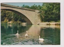 CPM - GREOUX LES BAINS - Le Verdon - Tourisme Thermalisme Climatisme - Cygne - Gréoux-les-Bains