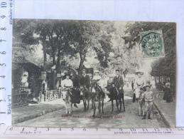 CPA (92) Hauts De Seine - LE PLESSIS ROBINSON - Une Promenade à Anes - Le Plessis Robinson
