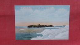 Herd Of Walrus Asleep On Iceberg In Bering Sea Alaska=====   === 2163 - Postcards