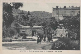 20-Corse-Ajaccio-Ecole Pratique Libre De Commerce - Le Jardin - Ajaccio