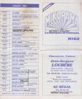40 -MIMIZAN--Plage -Bourg--Le REX Programme Festival De Cinema De L´Eté 1984 - Pubblicitari