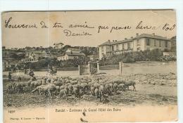 BANDOL - Environs Du Grand Hôtel Des Bains - Beau Plan Animé Avec Moutons Et Bergers - Précurseur - 2 Scans - Bandol