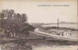 20-Corse-Ile Rousse - Huilerie De Balagne - Frankreich