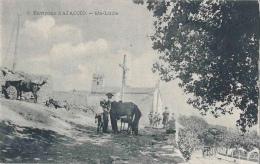 20-Corse-Environs D´Ajaccio -Ste Lucie ...Marechal Ferrant - Ajaccio
