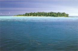 CT--N--979-- MALDIVES  - ALIMATHA - Maldive