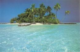 CT--N--980-- MALDIVES - THE DREAM ISLANDS - RIHIVELIBEACH RESORT - Maldive