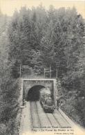 Environs De Toul Illustrés - Foug - Le Tunnel Du Chemin De Fer - Train Sortant Du Tunnel - Edition F. Poirot - Ouvrages D'Art
