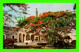 PANAMA - PLAZA DE FRANCIA - LA HERMOSA PLAZA DE FRANCIA - - Panama
