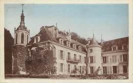 - Indre Et Loire - Ref A331 - Charnizay - Le Chateau - Carte Bon Etat - - France