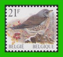 BUZIN - 2792** Grive Litorne / Kramsvogel - 1985-.. Oiseaux (Buzin)