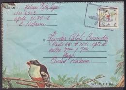 1987-EP-162 CUBA 1987. Ed.203. ANGOLA WAR. POSTAL STATIONERY. TOCOLORO AVES BIRDS. - Cuba