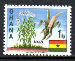 GHANA. N°278 De 1967. Maïs. - Agriculture