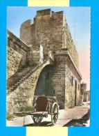CPSM  FRANCE  30  ~  AIGUES-MORTES  ~  30  En Flânant Vers Les Remparts  ( Combier Dentellée 1962 ) - Aigues-Mortes