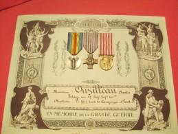 En Mémoire De La Grande Guerre/Présentoir De Décorations/+ 3  Médailles/17éme RI Territoriale// 1914-1918    DIP101 - Army & War