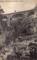CARTOLINA DI  DONGO VEDUTA DEL GIARDINO NOB. G. MANZI  VIAGGIATA 1903 - Como