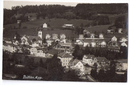 BÜHLER: Teilansicht, Tanner-Foto-AK ~1920 - AR Appenzell Rhodes-Extérieures