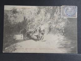 MADAGASCAR - Exploitation Forestière - P 15189 - Sri Lanka (Ceylon)
