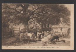 DF / 23 CREUSE / SAINT-SULPICE-LES-CHAMPS / BERGÈRE ET SON TROUPEAU DE MOUTONS / TABLEAU DE DESVARREUX-LARPENTEUR / 1904 - Other Municipalities