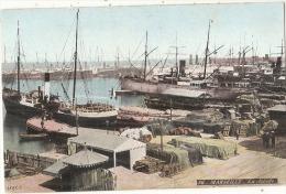 -13- MARSEILLE  Le Port De La Joliette Colorisée  Neuve Excellent état - Joliette, Port Area