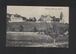 Schweiz AK  Schlösser Heerbrugg 1912 - SG St-Gall