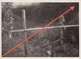 Photo Signée Grand Duché De Luxembourg Guerre 40-45 WWII Kalborn Clervaux Toute Une Légende Au Dos En Allemand - Guerre, Militaire