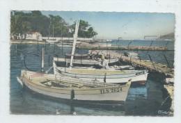 La Seyne-sur-Mer (83) : GP De Barques De Pêche Dans Le Port De Tamaris En 1961 (animé) PF. - La Seyne-sur-Mer