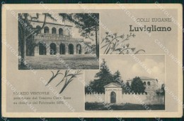 Padova Torreglia Luvigliano Di Palazzo Vescovile Cartolina VK0839 - Padova (Padua)
