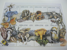 Sierra Leone-Mushrooms - Funghi