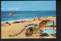 P4194 CAMPING LA TORTUGA - PINETA DI VIGNOLA, AGLIENTU ( Sassari ) - Campeggio + Cavallo, Cavalli, Spiaggia, Beach - Italia