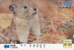 Carte Prépayée Japon - Animal Rongeur MARMOTTE - MARMOT Rodent Japan Prepaid Card - MURMELTIER - 42 - Télécartes