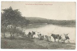 CPA SUR LES BORDS DU NIARI A LOUDIMA, CONGO FRANCAIS - Congo Français - Autres