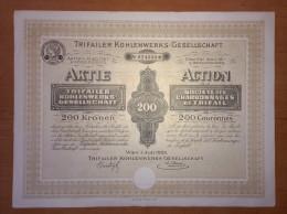SHAREHOLDING, AKTIE, WERTPAPIER, AUSTRIA, OSTERREICH, 200 KRONEN, 1923 - Shareholdings