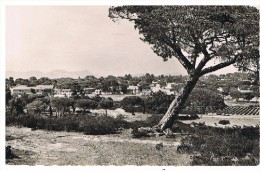 Fréjus : Camp Du Colonel Robert - Frejus