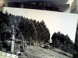 PARMA - SCURANO - LA PINETA AUTO CAR  VB1961  FG8808 - Parma