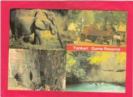 Multi View Card Of ,Yankari National Park,Nigeria.,Africa,Posted With Stamp, B21. - Altri