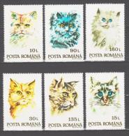 Romania 1993 Rumänien Mi 4885-4890 Cats **/MNH - Chats Domestiques