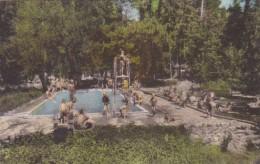 California Cobb Lake County Pine Grove Resort swimming Pool Handcolored Albertype