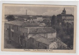 Conselice     -veduta 1900 - Ravenna