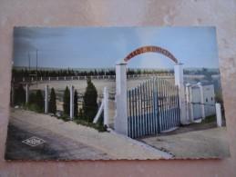 CPSM 34 LESPIGNAN Le Stade Municipal - Otros Municipios