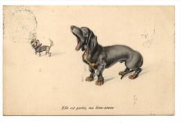 VIENNE.M.M.MUNK.CHIEN TECKEL.LOVING DOG.DOG DACHSHUND............6262 - Chiens